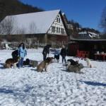 2010-03 Hundeschule