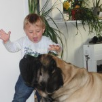04 - Tristan und Buddy